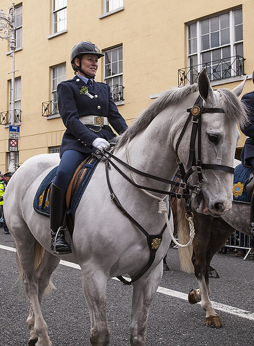 An Garda Siochana photo